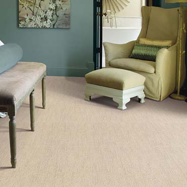 Caress Carpet by Shaw | West Dover, VT